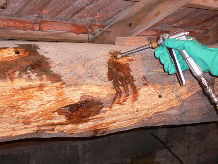 tratamiento madera valladolid massim