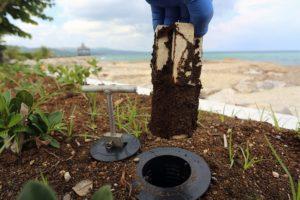 cebos tratamientos contra termitas valladolid