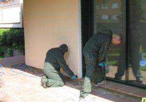 tratamientos eliminar termitas valladolid