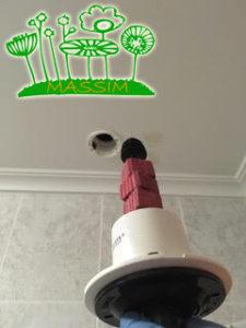 desratizaciones tabiques y falsos techos Valladolid MASSIM